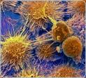 Опасные бактерии в современном холодильнике и моющие пробиотики